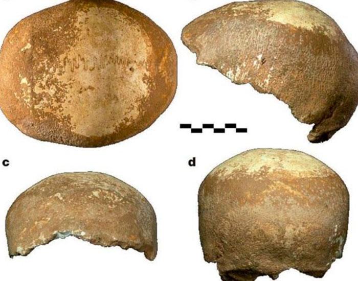 Un cráneo de hace 55.000 años prueba la coexistencia entre neandertales y sapiens