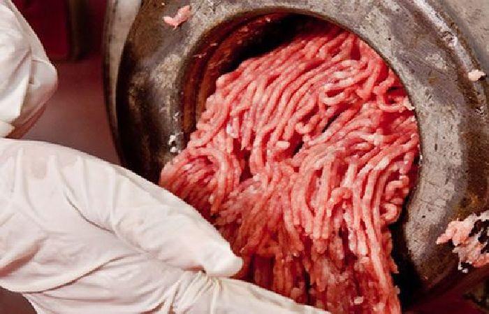 Europa veda la carne de caballo de México