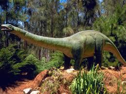 Dinosaurios consumían hongos alucinógenos