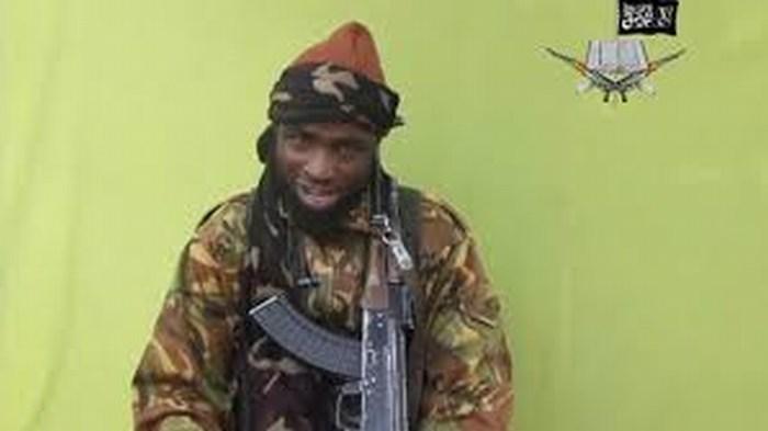 Denuncian que Boko Haram mató a más de 1.000 civiles en 2015