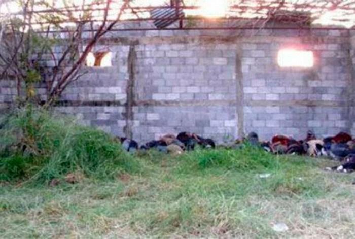 Detienen a presunto autor de matanza en San Fernando