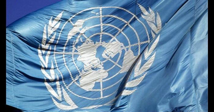 Panel de la ONU determina que arresto de Nestora Salgado fue ilegal