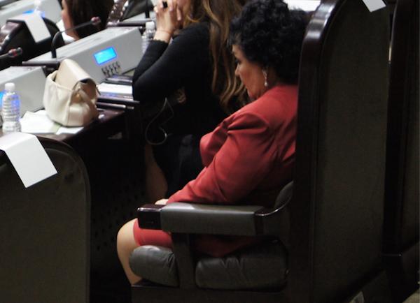 Carmen Salinas inicia en la Cámara de Diputados con selfie…y se duerme
