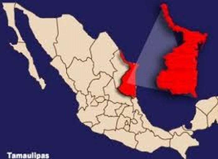 Fuerza Tamaulipas detecta campamento de grupo delincuencial