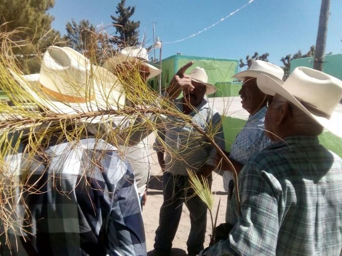 Atienden con brigadas a sector rural
