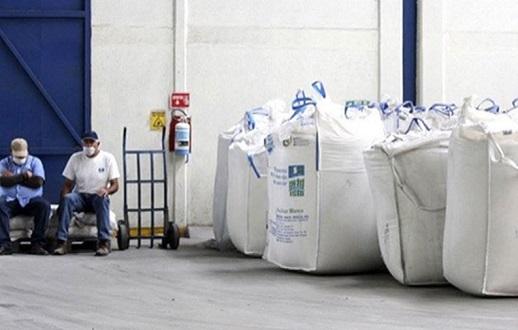 Freno a exportación de azúcar deja 159 mil tons en Tamaulipas