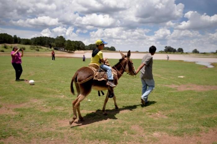 Saltillenses y turistas pueden disfrutar del campo en familia
