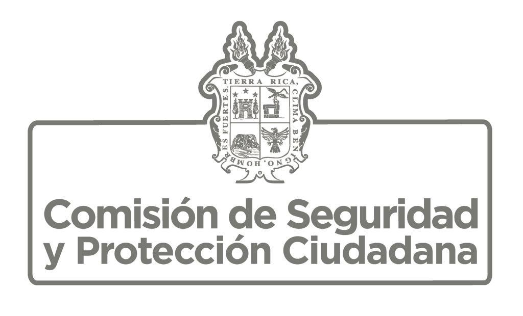 Logo Comisión de Seguridad y Protección Ciudadana