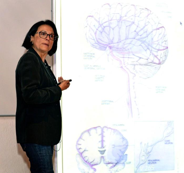 La glucosa es vital para que funcione el cerebro: investigadora UNAM