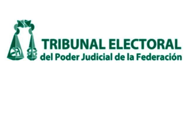 TEPJF echará para atrás multa de 197 mdp a Morena