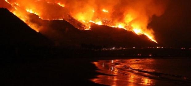 EU bajo fuego: arden más de 100 incendios forestales simultáneamente en su territorio