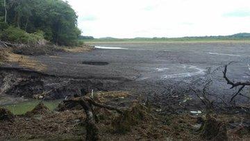 Se abrió la tierra y en 24 horas se tragó una laguna en Quintana Roo