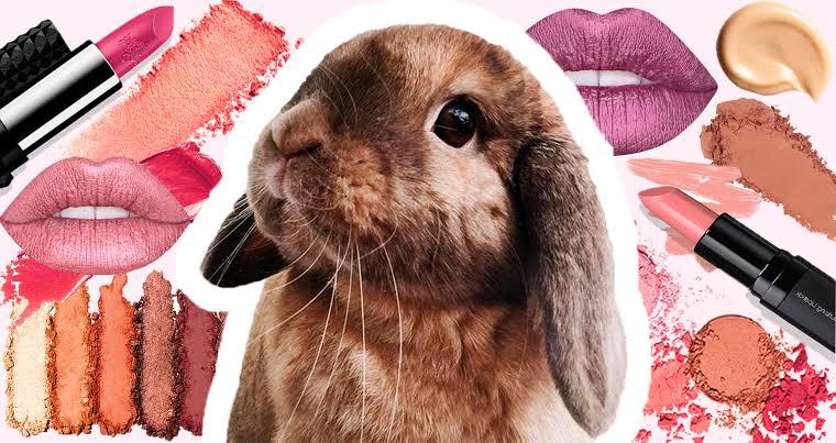 11 Marcas de maquillaje que testan en animales.