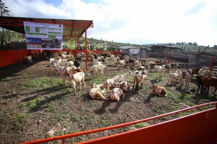 Apoya Municipio a productores del campo en la compra de equipamiento