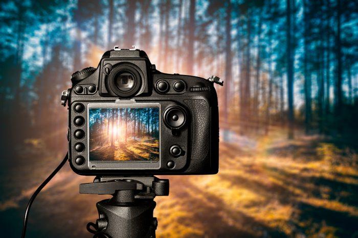 Trabajo de lujo: Ofrecen 3 mdp a fotógrafo que pueda viajar por el mundo