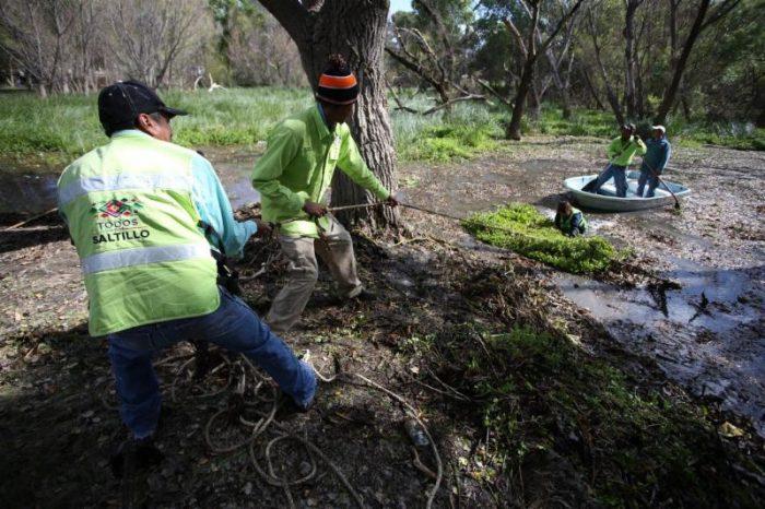 Realizan acciones de limpieza en ciénega de San Juan de la Vaquería