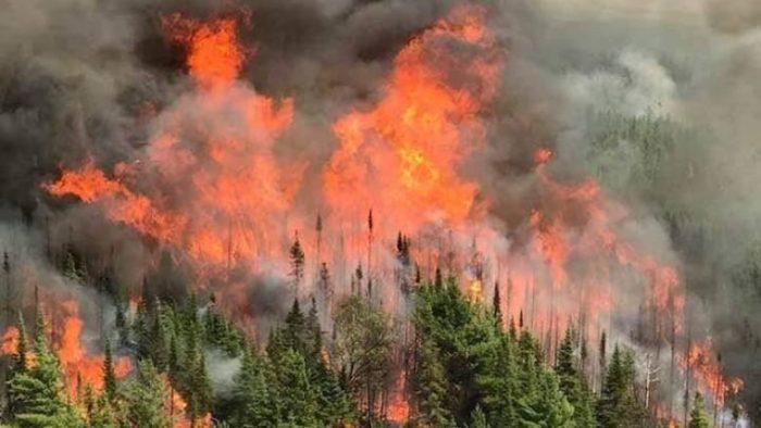 Incrementan riesgos de incendios forestales