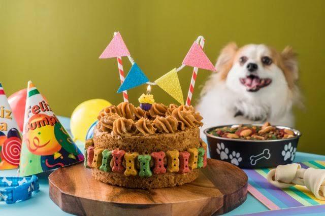 Pastel para Perros de Calabaza.