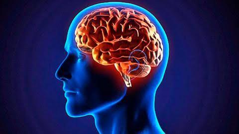 Estrategias para desarrollar el intelecto.