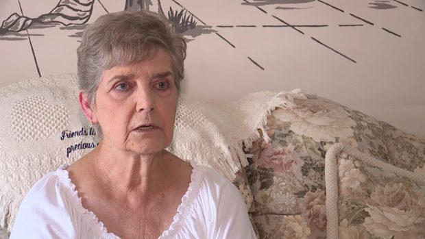 Unos vecinos abandonaron a sus gatos, ella los alimentó y la condenan a prisión