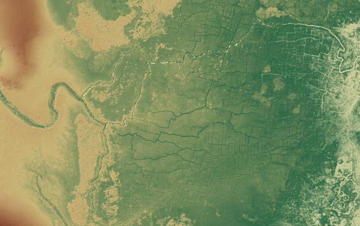 Hallada una enorme red de canales y cultivos mayas oculta bajo la selva