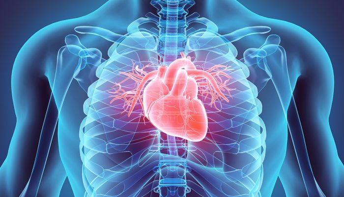 Aunque seas asintomático, el COVID-19 puede causar daños a tu corazón, según estudio