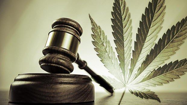 La legalización de la marihuana se aprueba en el Senado