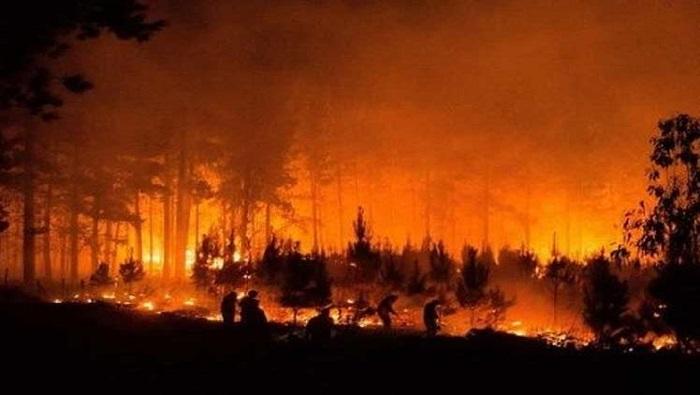 Son evacuadas 25 mil personas por incendio forestal en Chile