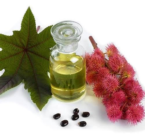 Beneficios del Aceite de Ricino.