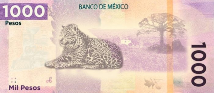 Nuevo billete de 1,000 pesos ya tiene fecha para entrar en circulación