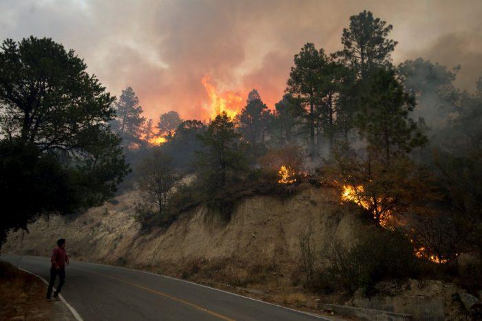 Incendio forestal inicia en la cabaña de un regio.  Por : Plácido Garza