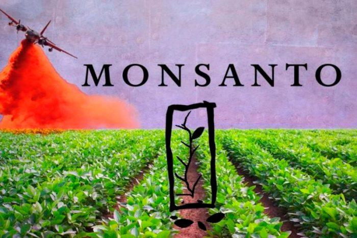 ONGs de México piden rectificar fallo a favor de Monsanto por glifosato
