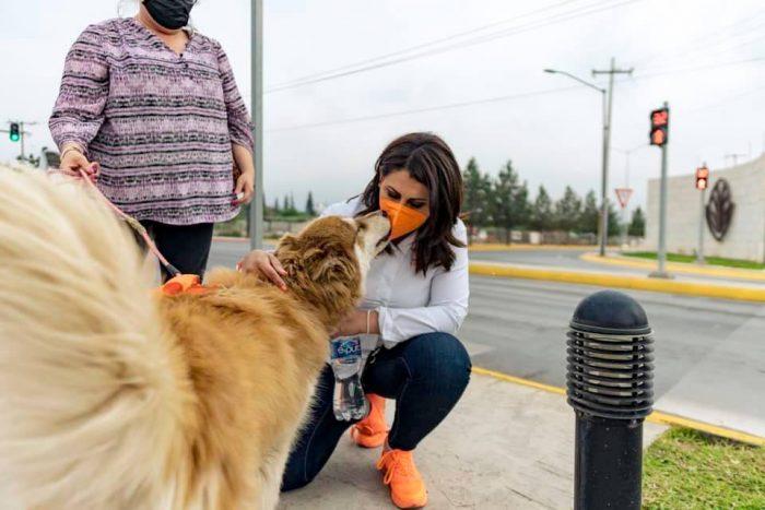 Un éxito Ruta Canina de Movimiento Ciudadano