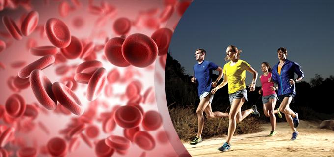 11 alimentos que mejoran tus niveles de oxígeno en sangre (aumenta la hemoglobina)